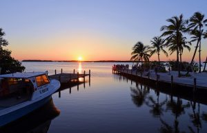 Learn what to expect as a newcomer prior to Florida move