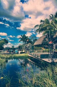 Everglades tours that you can partake in once you relocate to Florida City.
