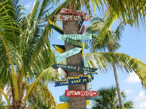 Palm tree with arrow signs pointing towards various locations in the world.