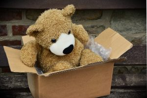 Teddy Bear in a moving box