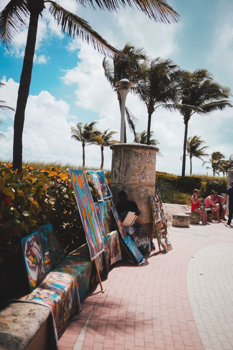 Palms and street art - like in the coolest streets to visit in Miami.