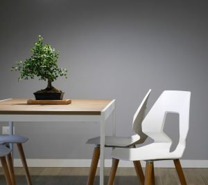potted plant on a table - upgrade your Miami office