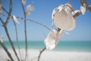 Sunny beach and sunny day